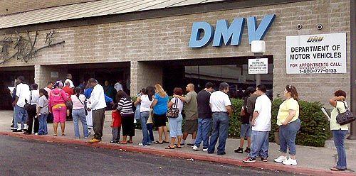 водительские права в америке