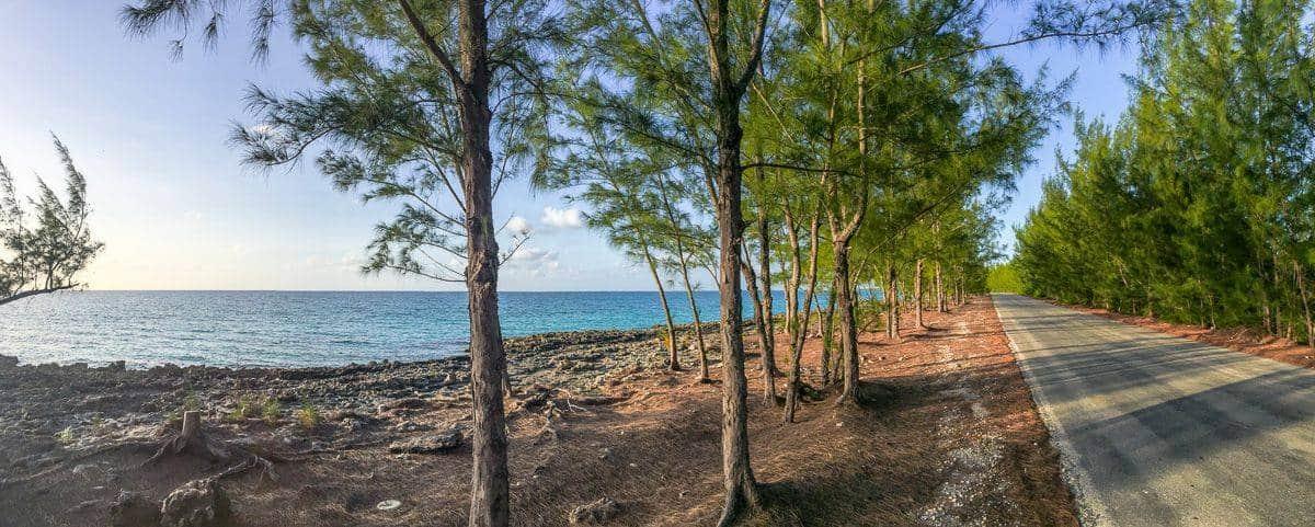 bahamas-391
